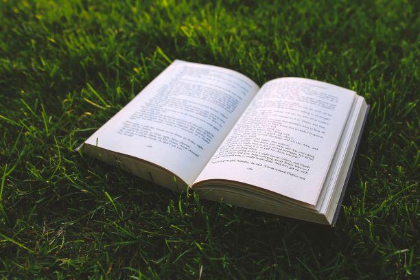 Micro-résidences d'auteurs : un été placé sous le signe de la culture !