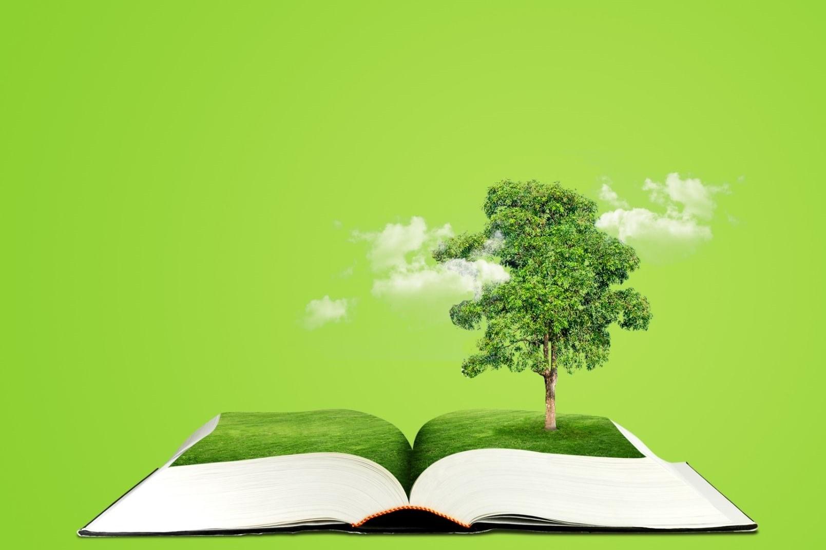 Le livre et le développement durable en Grand Est : participez au questionnaire