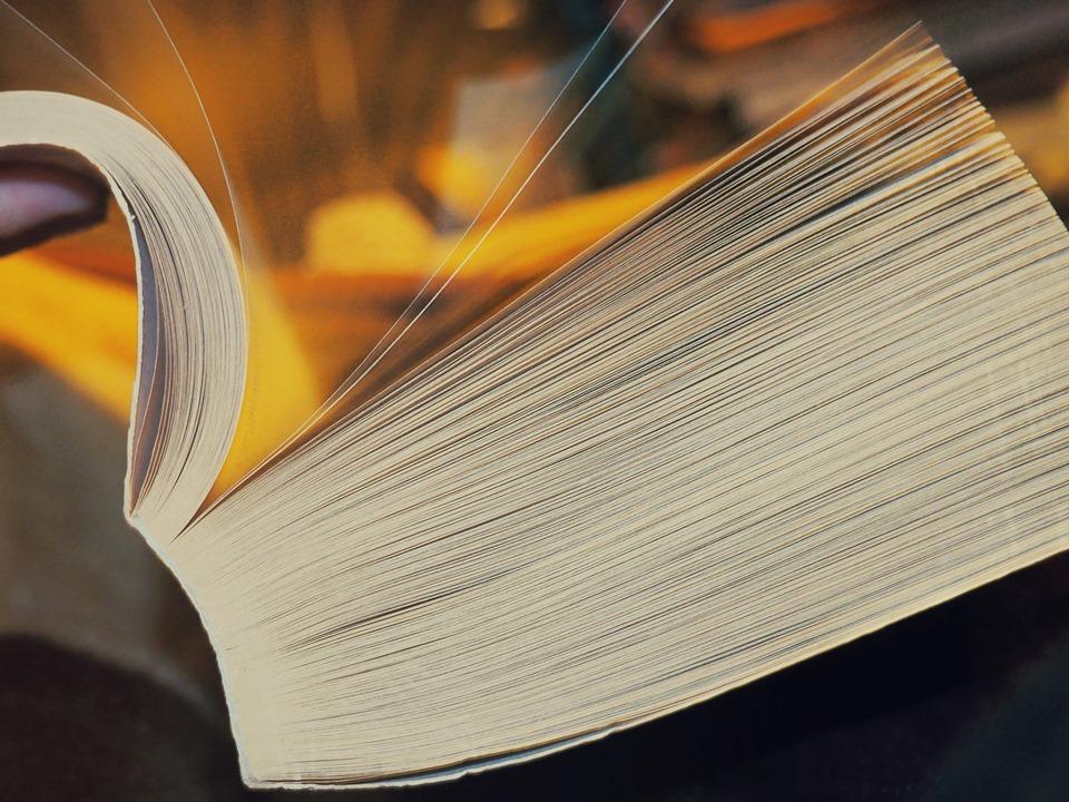 L'Ami littéraire -Maison des écrivains et de la Littérature [EAC]